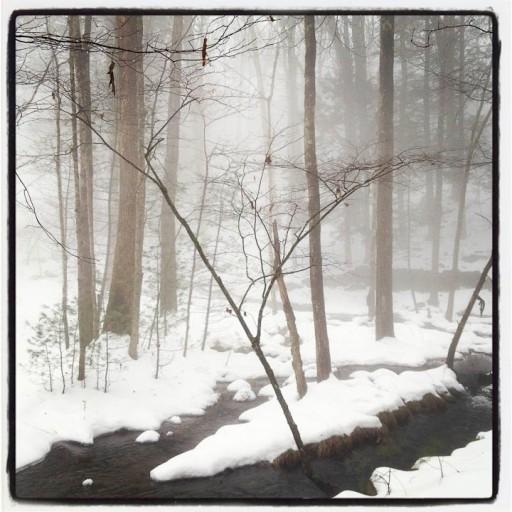 Stone Ridge, NY, 12/22/13