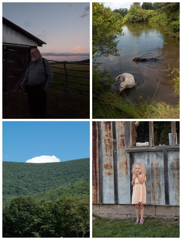 Clockwise from top left: Douglas,  Kerhonkson, NY; Ryder and Leo, Minnewaska State Park Preserve, Kerhonkson, NY; Andes, NY; Phoenicia, NY.