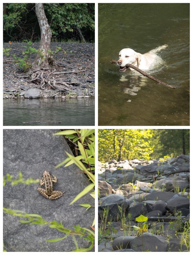 Swimming Hole, Stone Ridge, NY, 9/15