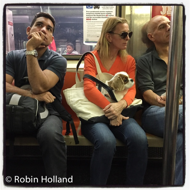 IRT 1 Train, Times Square Station, NYC, 10/22/15